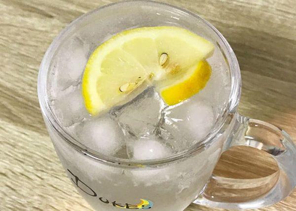 冷凍食品 冷凍 カットレモン スライスレモン レモンチューハイ